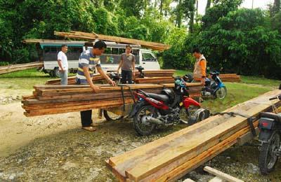 kayu tangkapan